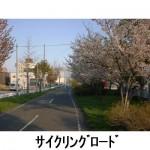 サイクリングロード(建物北東側)