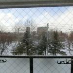 居間の窓からの景色 まくらぎ公園
